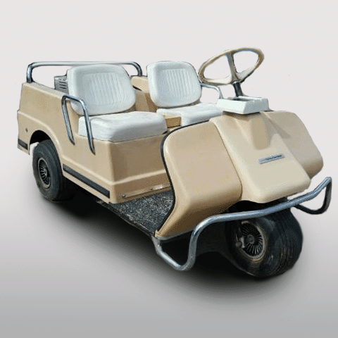Harley Davidson Golf Cart DE